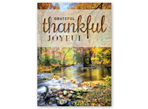 Thanksgiving Stream Holiday Greeting Cards